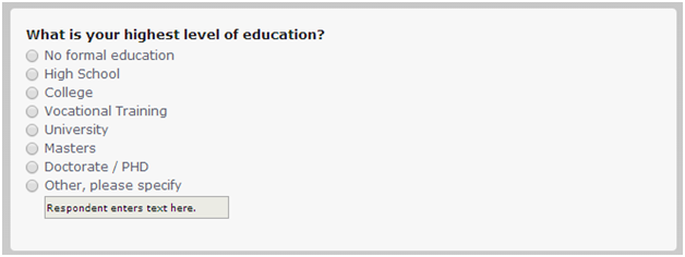Demographic Questions - Level of Education